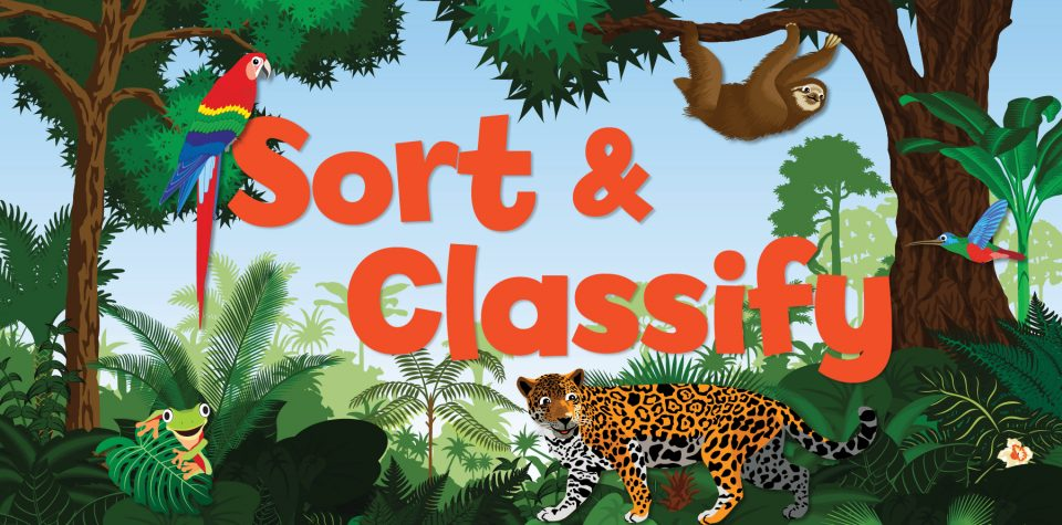 Animal Classification in the Amazon for Kids