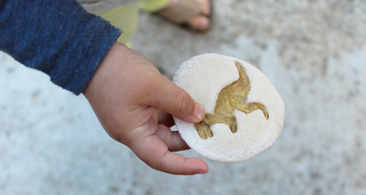 DIY Make a Fossil using Salt Dough Dinosaur Activity for Kids