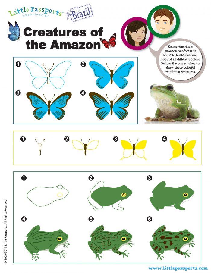 Brazil Printable Drawing the Amazon