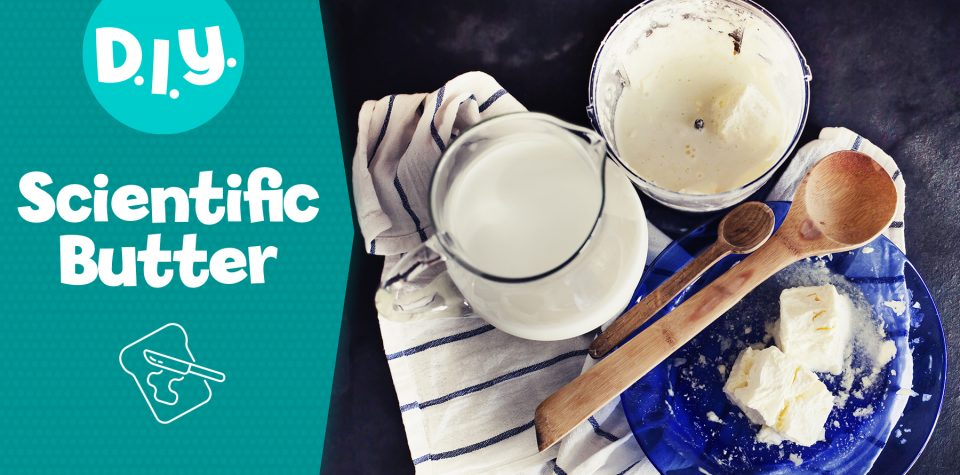 Make Butter - A Simple Science Project for Kids
