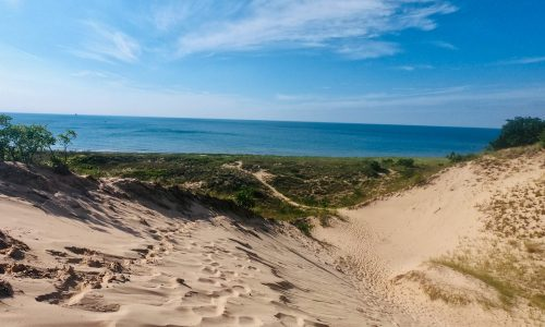Hike this kid-friendly trail at Indiana Dunes Park