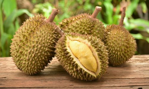 Learn about durian with Little Passports