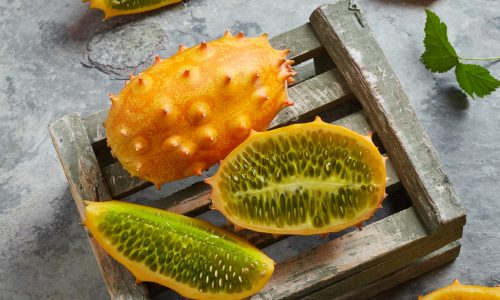 Learn about kiwano with Little Passports