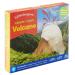 Create + Play Volcano packaging
