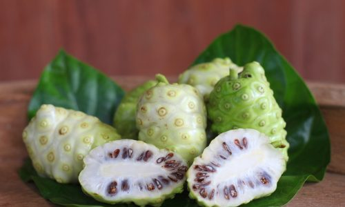 Learn about noni fruit with Little Passports